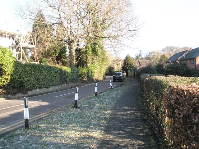 Lingering frost in Bunch Lane