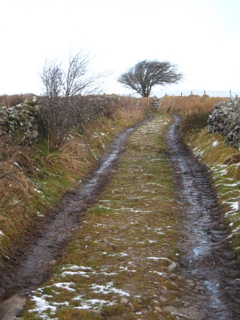 Track on the south slope of Tolborough Tor