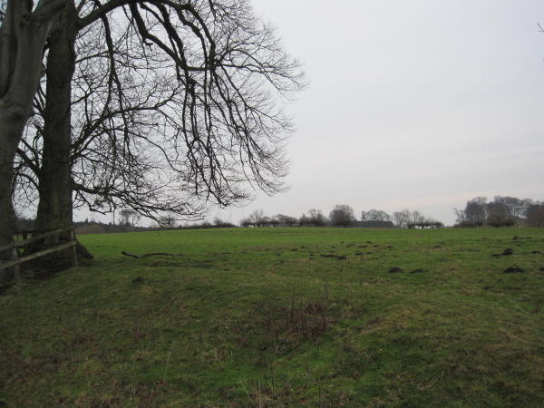 Field near St Leonard;s Hospital
