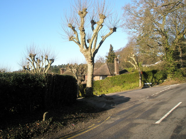 Approaching the junction of Farnham Lane and Weysprings