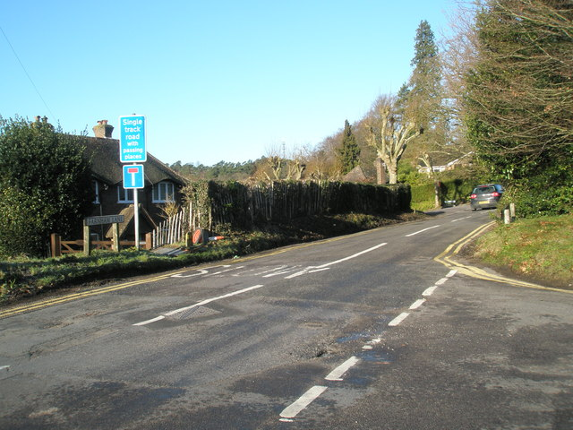 Looking from Bunch Lane into Farnham Lane