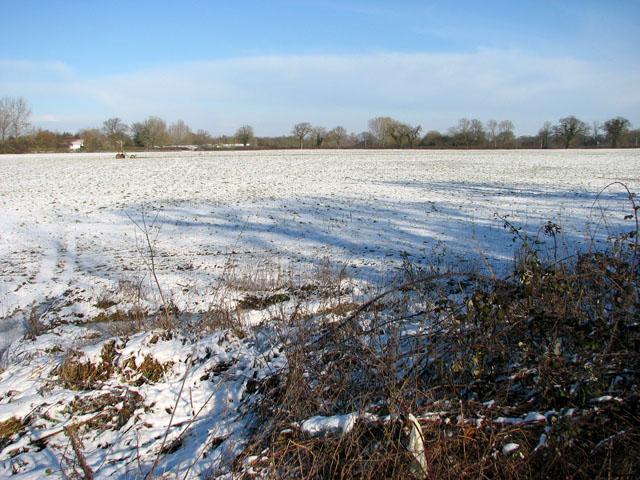Snowy field north of Harvey's Lane