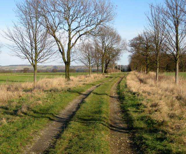 Towards Moortown House Farm
