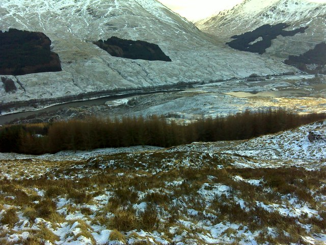 Forest in Glen Dochart
