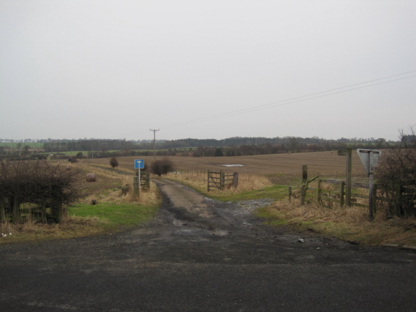 Track and footpath to Black Plantation and Telephone Mast