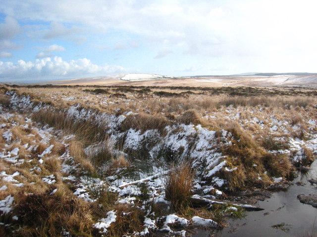 Moorland boundary wall
