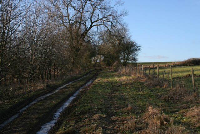 Farm track between Croxton Kerrial and Branston