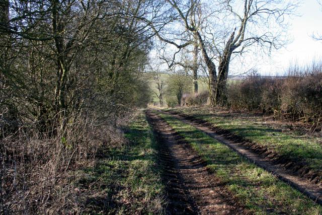 Farm track towards Branston