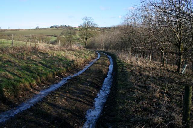 Frozen track