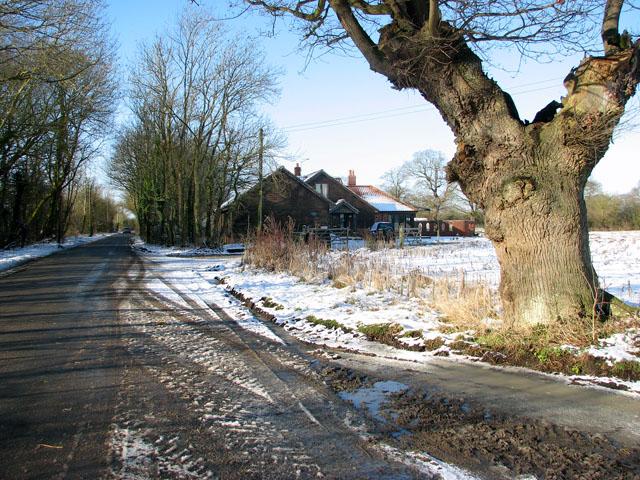 Harvey's Lane past Nene Valley Farm
