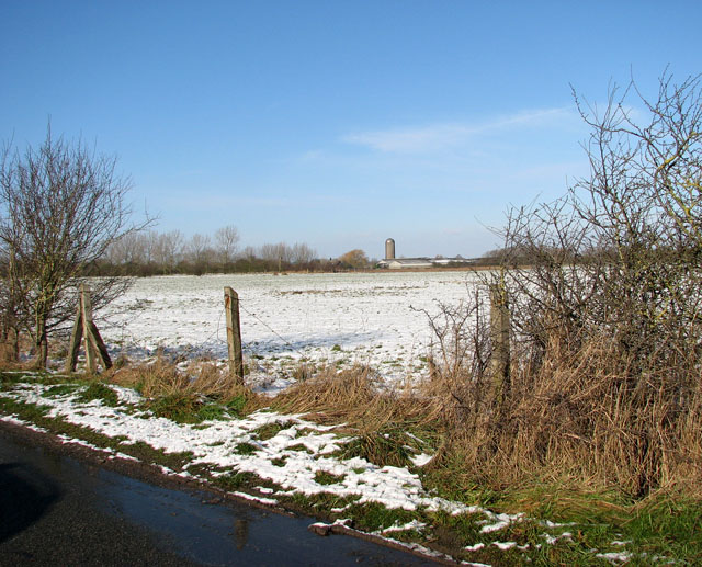 View towards Upgate Farm from Toad Lane