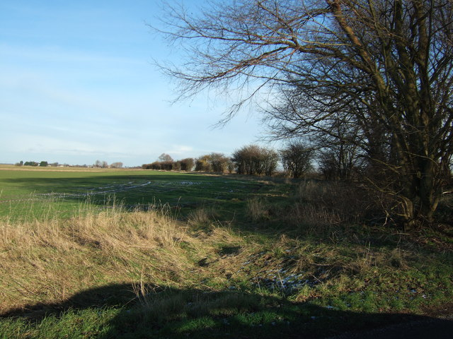 Old Common Bank