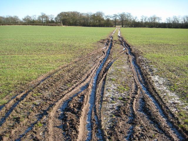 Frozen tyre tracks