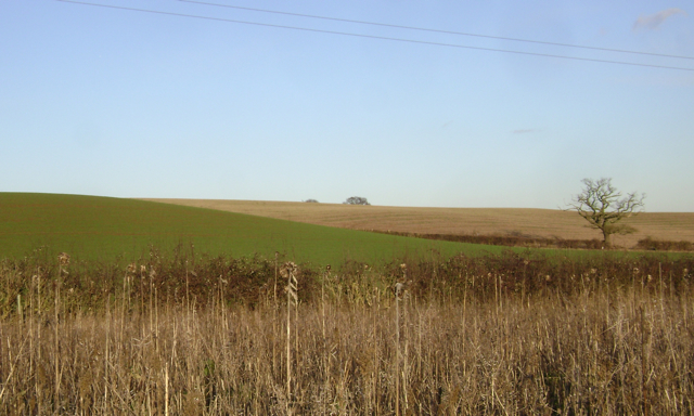 Hillsides north of Lower Grange