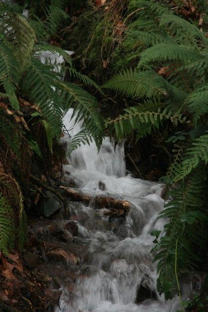 Small stream by the path to Porlock