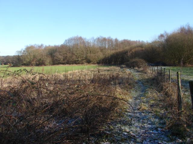 Footpath off Halebourne Lane