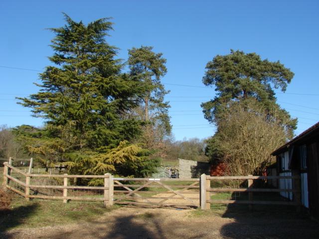 Steep Acre Farm, Chobham