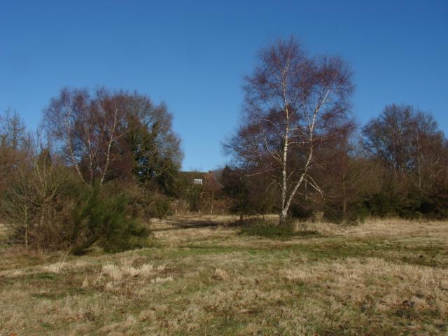 Burrowhill Green