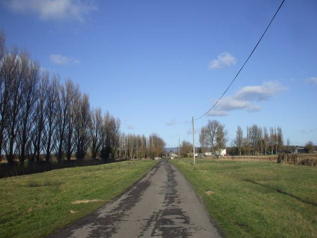 Road from the sea wall, near Elm Tree Farm, Goldcliff