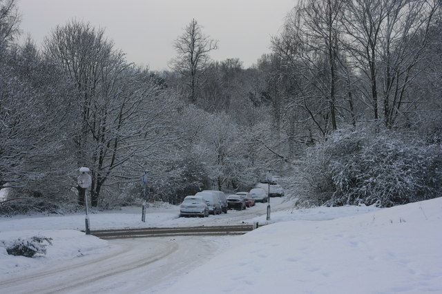 A snowy scene on Tunbridge Wells Common