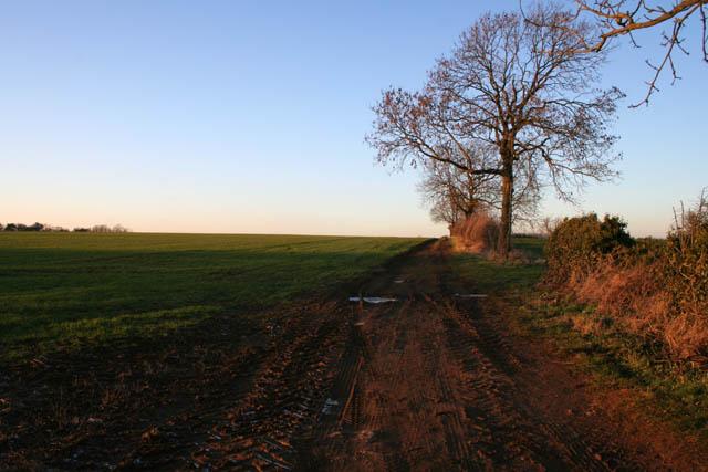 Field track at New Barn Farm