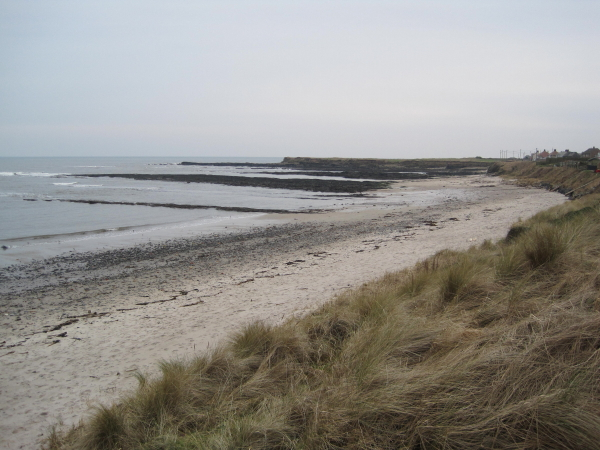 Beadnell Haven