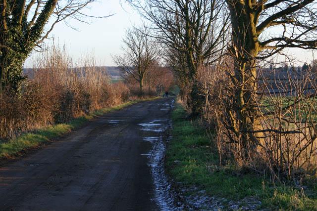 Farm road to New Barn Farm