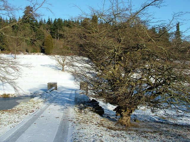 Stanage Park drive and bridge