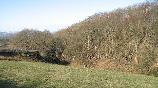 Glen of Pitcur