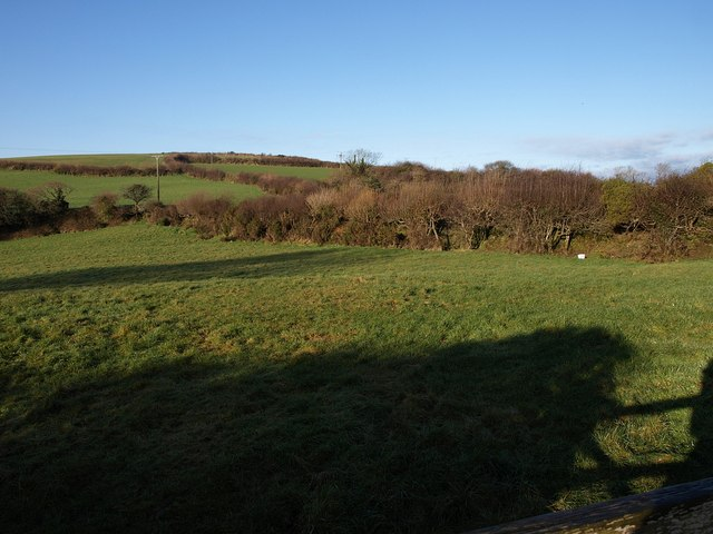 Field at Fenton Pits