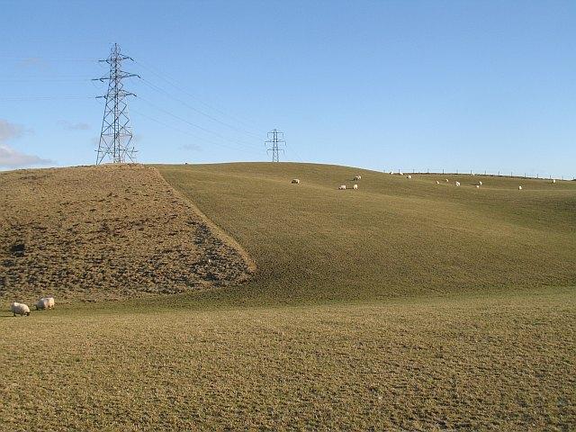 Grassland, Thrawparts