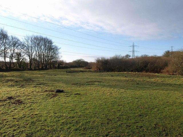 Meadow near Trebell Green