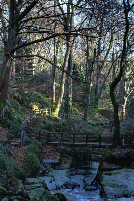 Ballaglass Glen in January