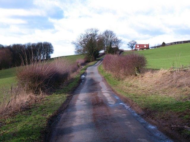 High Lane Landmoth