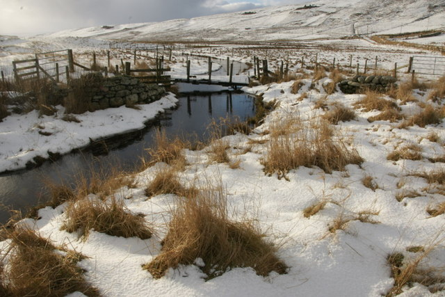 Norwick meadows in the snow
