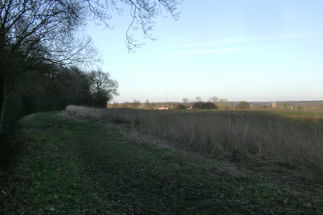 In the shadow of South Cubbington Wood