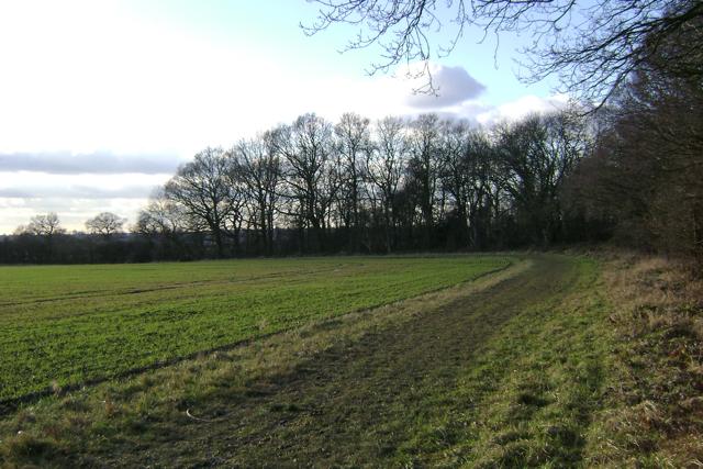 Southwest corner of South Cubbington Wood