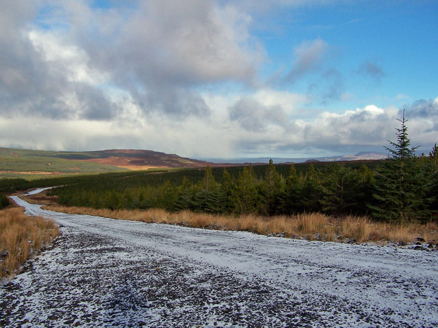 Greshonish forest from the wind farm track