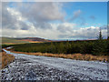 NG3248 : Greshonish forest from the wind farm track by Richard Dorrell