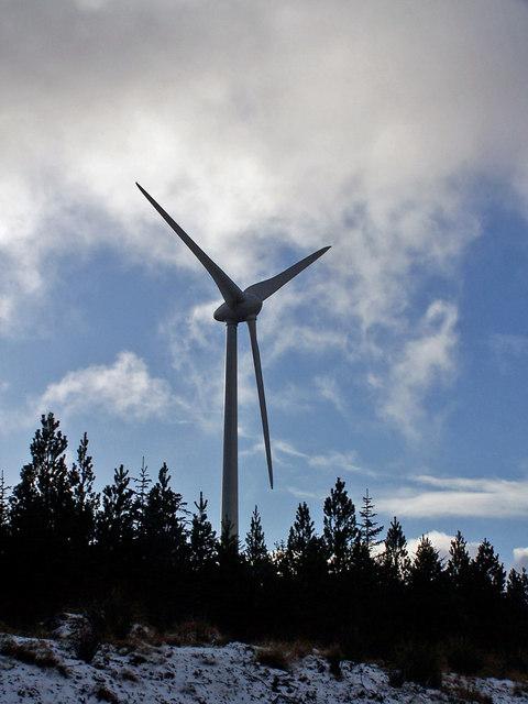 Trees and turbine