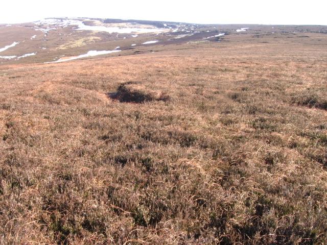 Swineshaw Moor