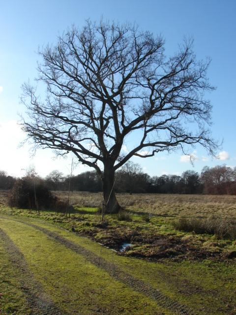 Lovelands Farm
