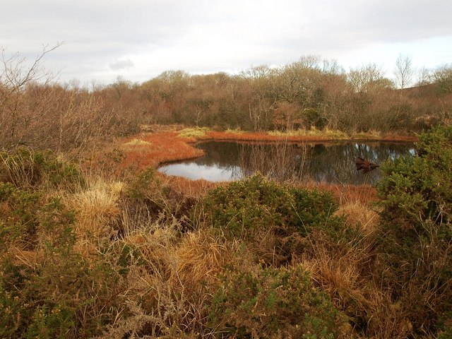 Pond on Breney Common