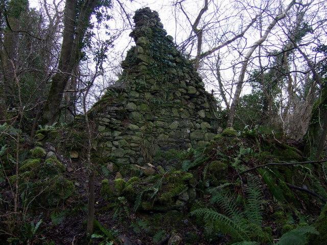 Ruin above Aberfforest