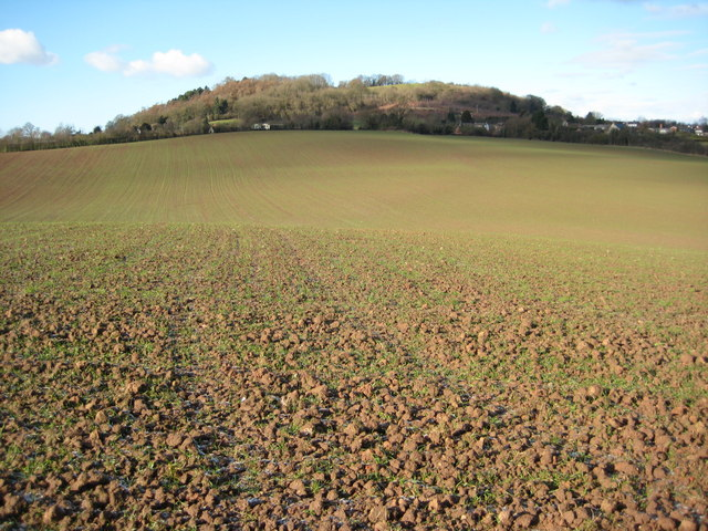 Arable land near Berrow Green