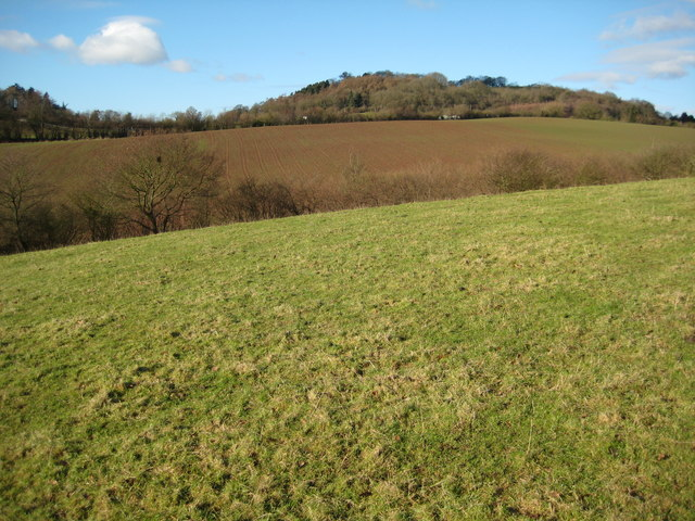 Farmland at Berrow Green