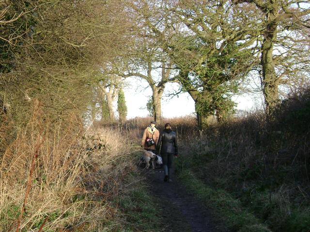 Dogwalkers, Mill Lane