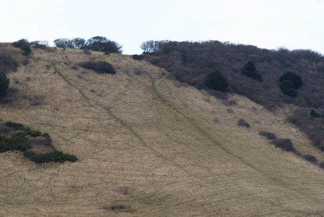 Downland Near Eastbourne