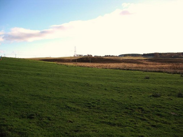 Cultivation Remains near Righead