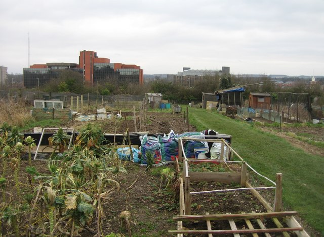 South View allotments